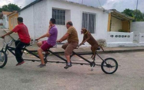 Tres hombres y un perro dando un paseo en una bicicleta para 4 personas