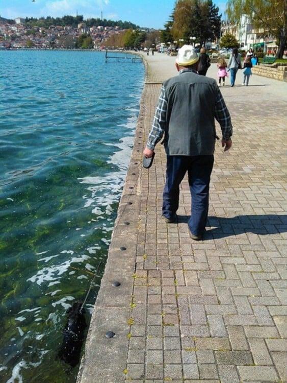 Hombre caminando por la orilla de un lago que lleva a su perro bajo el agua
