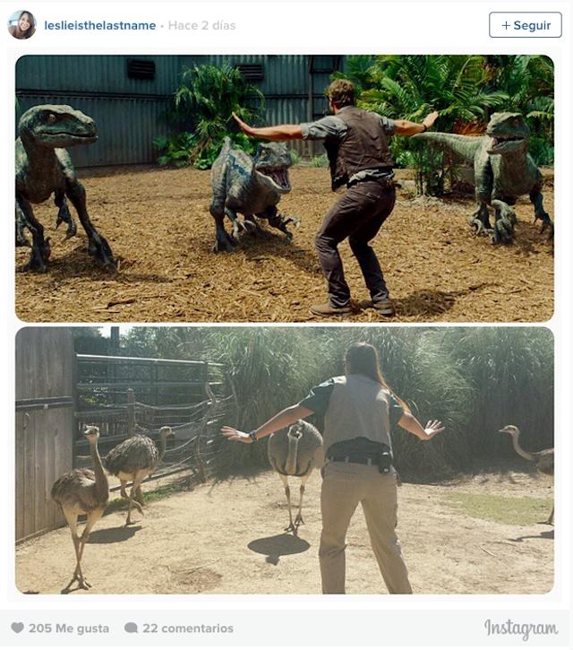 Mujer frente a 4 avestruz con una pose donde intenta calmarlas