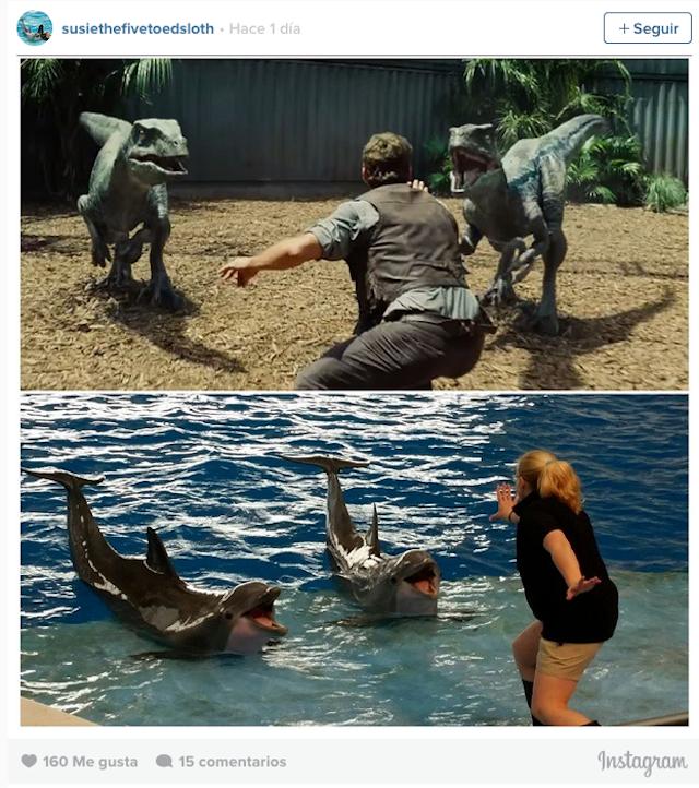 Mujer en una pose intentando calmar a unos delfines dentro de un acuario