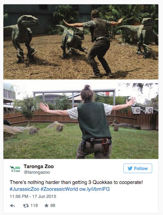 Taronga Zoo recreando una escena de la película Jurassic World
