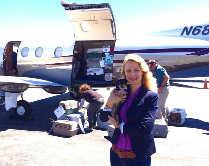 voluntaria de la organización alas de rescate antes de subir perros a un avión