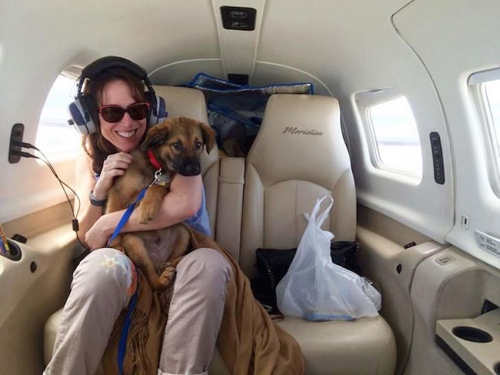 voluntaria de la organización alas de rescate en un avión con un perro