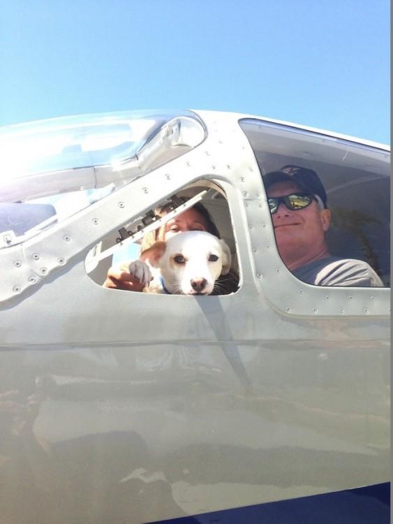Avión donde van dos personas con un perro sobre él
