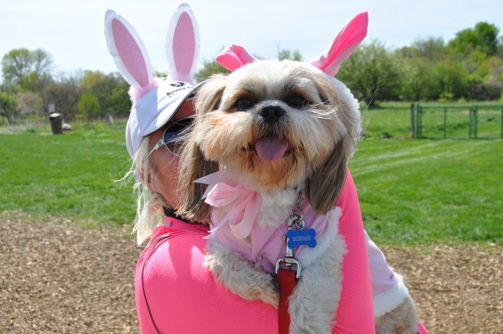 mujer viste de conejoto rosa a perro