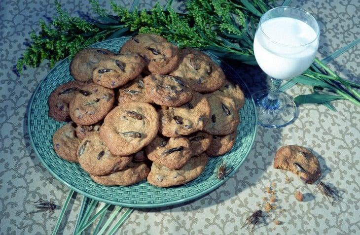 galletas de avispa y grillos