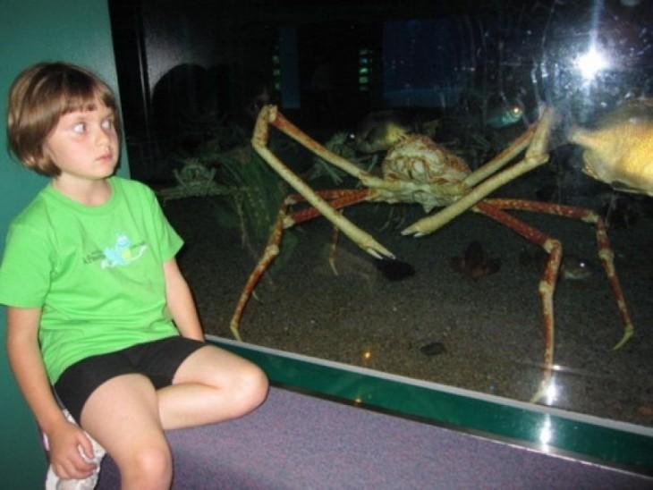 niño posando asustado con un cangrejo de centella