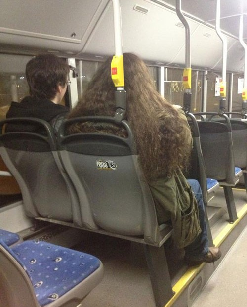 dobles de harry potter y hagrid