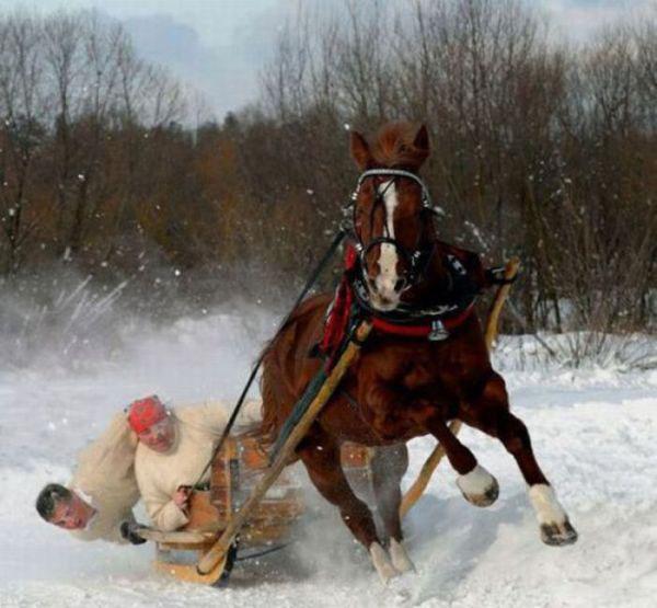 trineo se voltea cuando va por la nieve