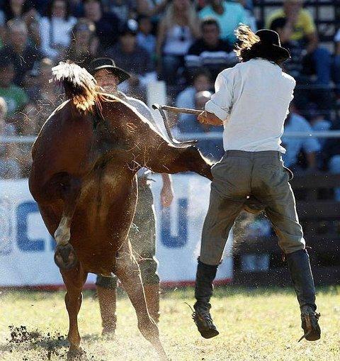 caballo le pega en la entrepierna a hombre cuandorelincha
