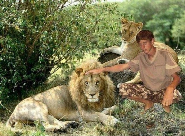 niño se photoshope junto a leones