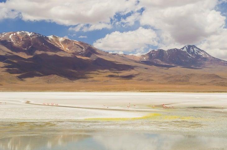 Altiplano de los Andes en Bolivia