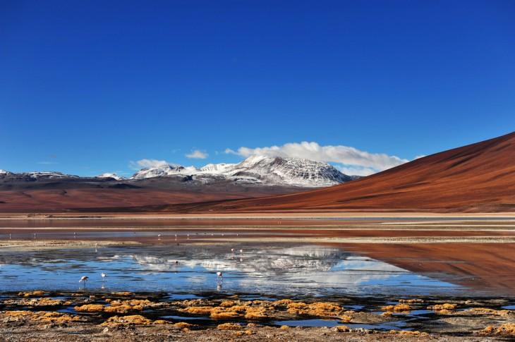 Laguna Blanca en el Altiplano Boliviano