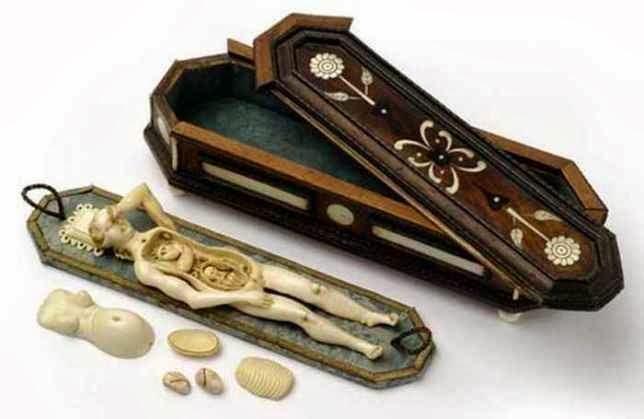 Modelo Anátomico 1820