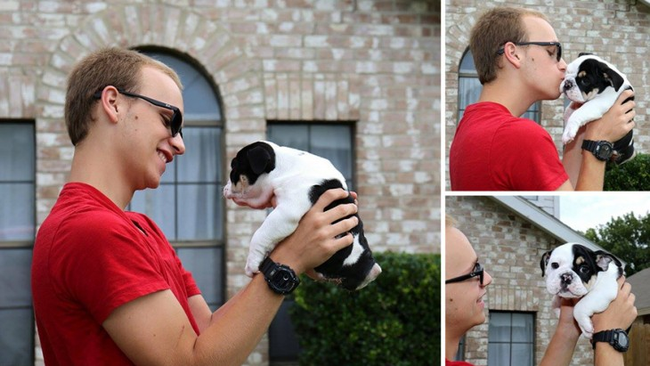 un chico cargando a una pequeña perrita bull dog