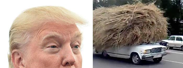 Carro con paja encima se parece al peinado de Donald Trump