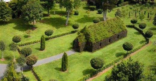 El proyecto de este hombre fue dejar crecer arboles en una estructura para dar creación a una iglesia muy natura