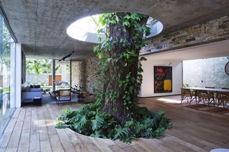 árbol con ramas en medio de la sala y el comedor de una sala