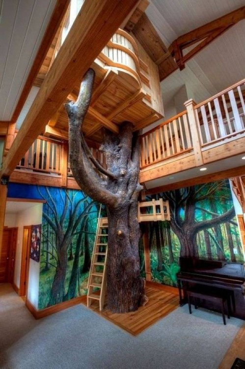 escaleras alrededor de un árbol dentro de una casa