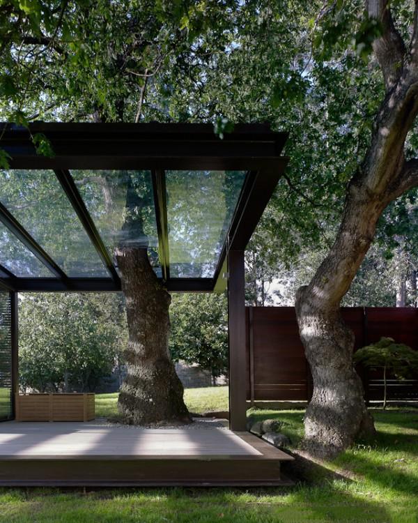 árboles dentro y fuera de una casa