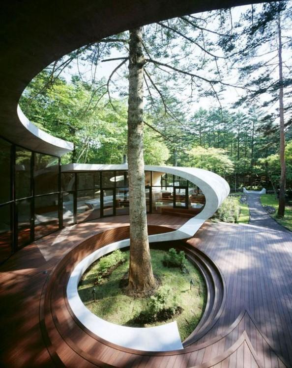 árbol afuera de una casa