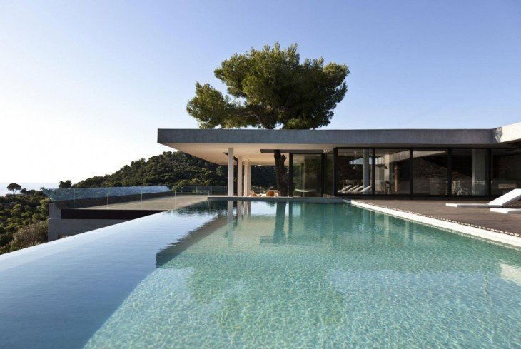 casa con alberca con un árbol en su exterior
