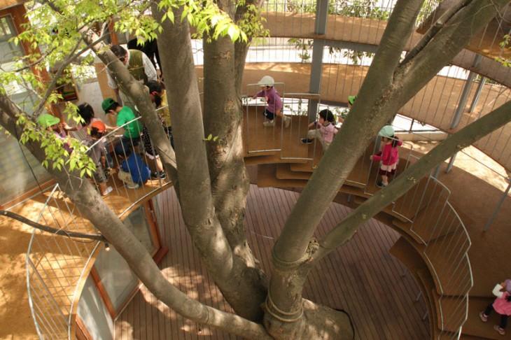 niños subiendo unas escaleras alrededor de un árbol