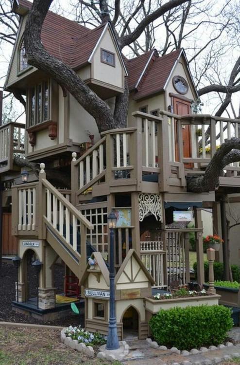 casa construida alrededor de un gran árbol