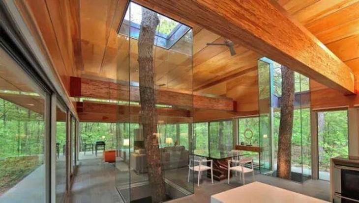 diseños de casa con árboles en su interior