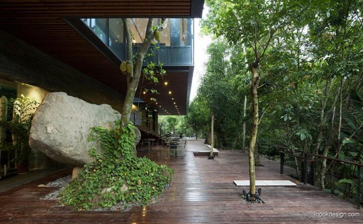 casa rodeada de árboles
