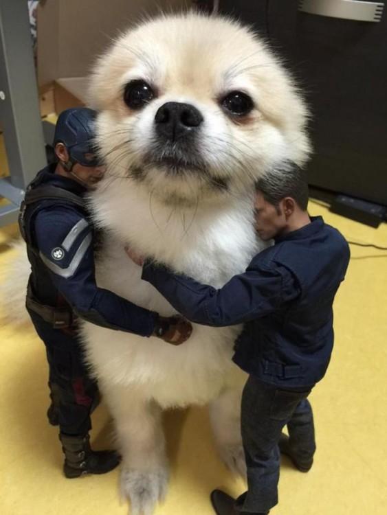 Muñecos abrazando a un  perro blanco que parece estar muy grande