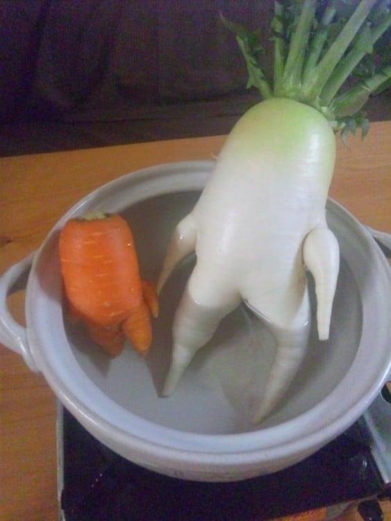 zanahoria y rábano dentro de una hoya llena de agua