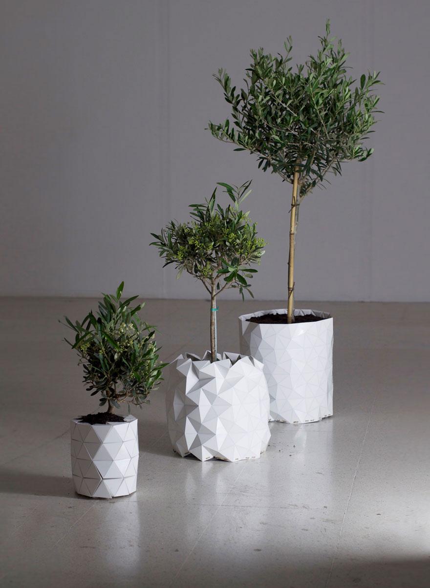 Maceta origami que se desdobla y crece junto con tu planta - Hierba luisa en maceta ...