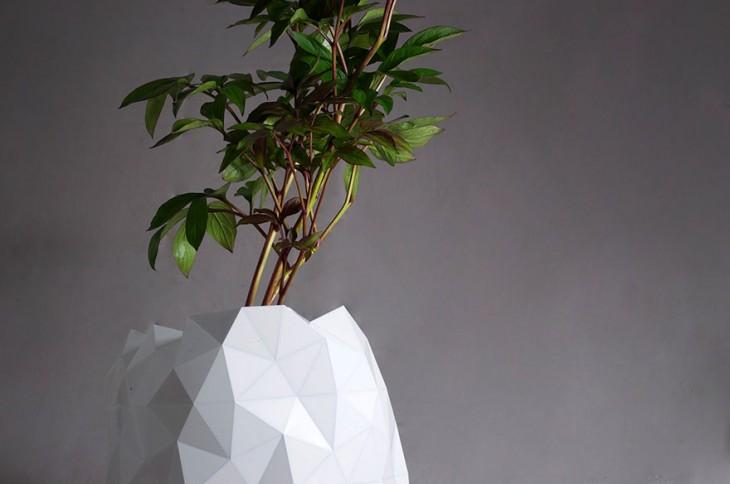 Fotografía de una planta dentro de una maceta