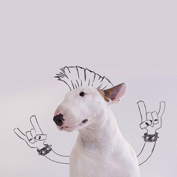 Cachorro con dibujos de dos manos y cabello de rockero