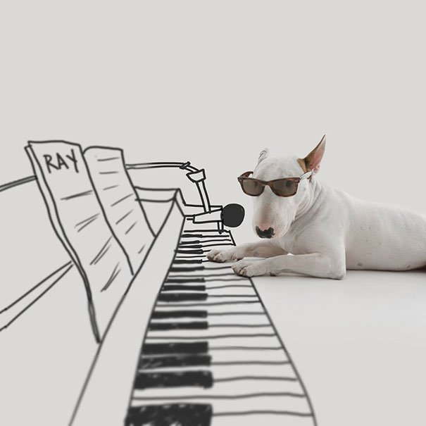 Perro frente a un dibujo de un piano