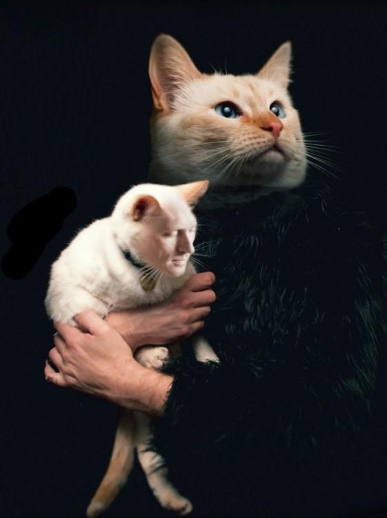 Hombre con cara de gato sosteniendo a un gato con cara de una persona