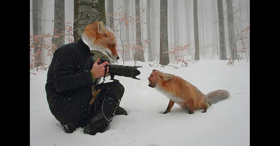30 Imagenes De Animales Y Personas Intercambiando Caras