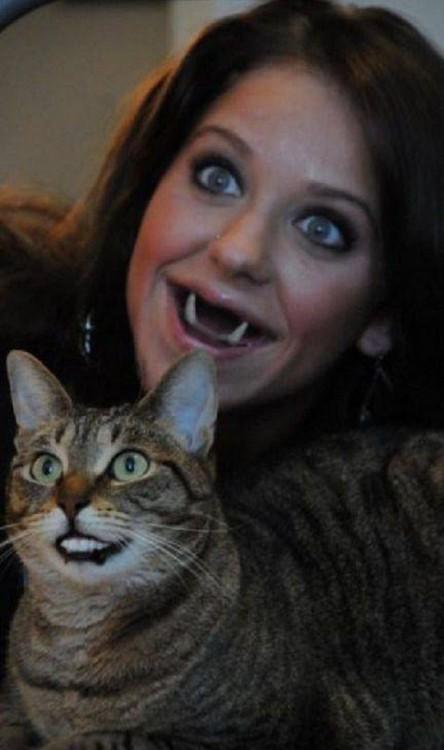 Mujer con boca de gato y gato con boca de mujer