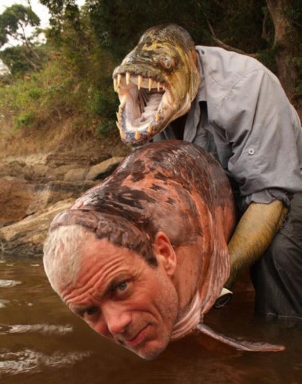Hombre intercambia la cara con la de un pez