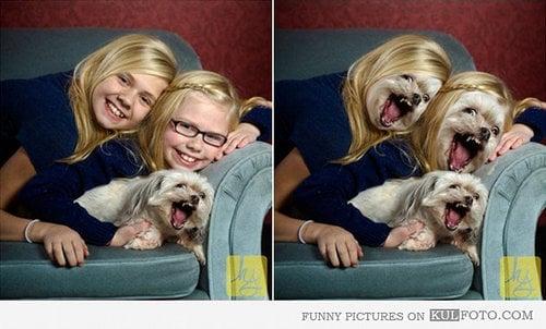 Niñas con cara de perro acostadas en un sillón