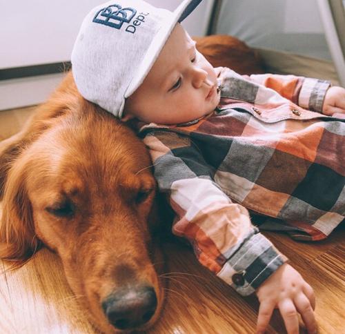 niño acostado sobre su perro