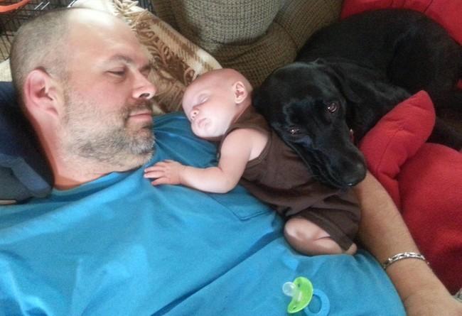 Un hombre acostado con un bebé en su pecho y un perro recargado en el bebé