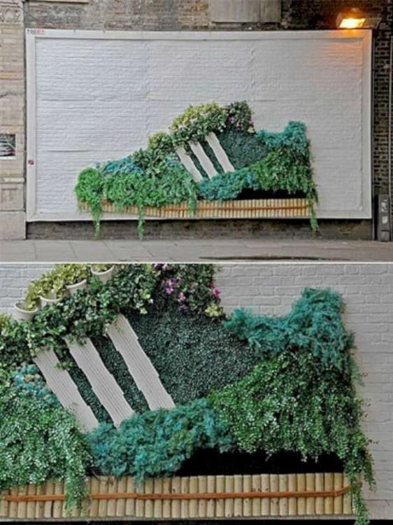 Tennis echos con plantas en una pared