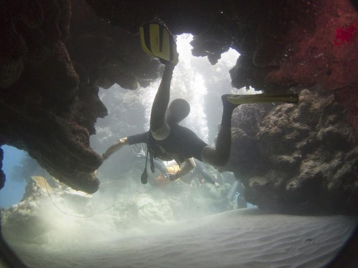 Personas debajo de un arrecife buceando en la isla de Utila en Honduras