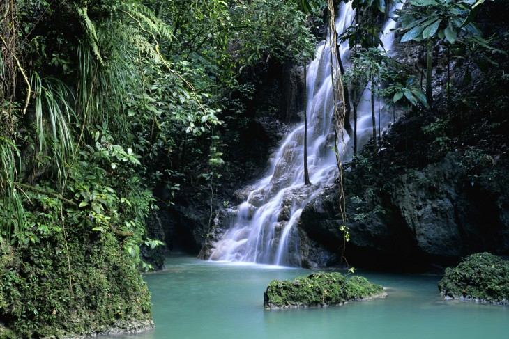 Somerset Falls in rainforest, Port Antonio, Jamaica