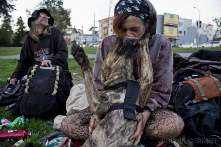 chica sentada en el césped mientras su perro lame su nariz