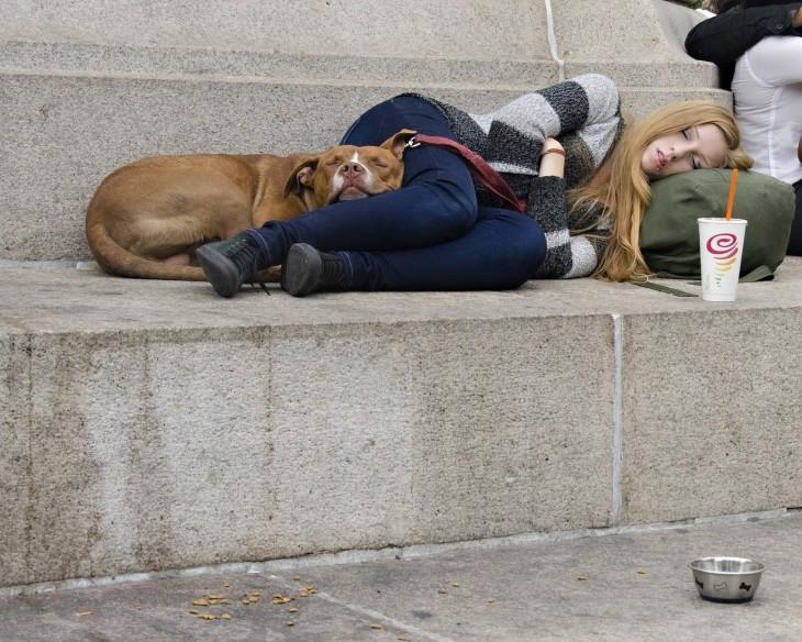 Perro recostado junto a su dueña en una calle
