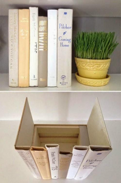 superficie de una caja adornada con libros a su alrededor junto a una planta