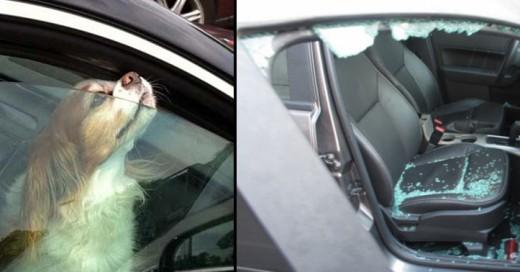 romper vidrio auto legalizado en tennesse